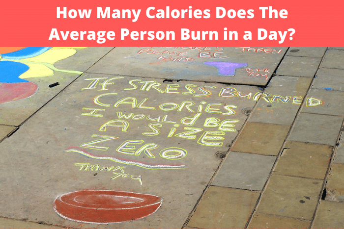 How Many Calories Does the Average Person Burn in a Day