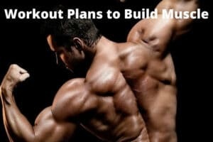 Workout Plans to Build Muscle