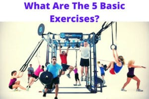 What Are The 5 Basic Exercises
