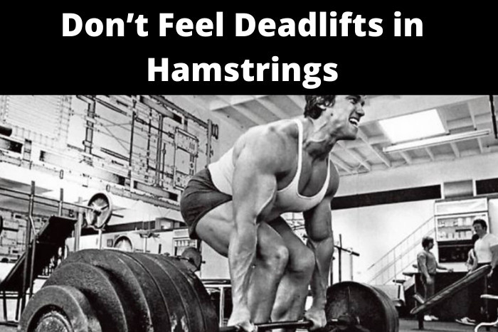 Don't Feel Deadlifts in Hamstrings