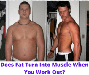 Does Fat Turn Into Muscle When You Work Out
