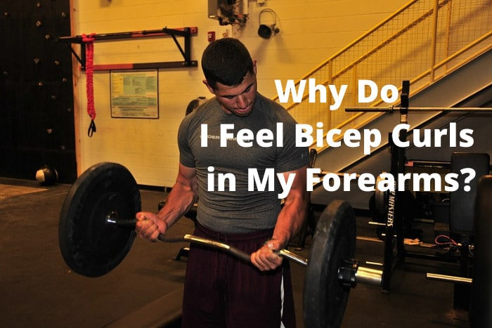 Why Do I Feel Bicep Curls in My Forearms