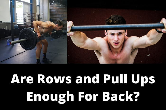 Are Rows and Pull Ups Enough For Back