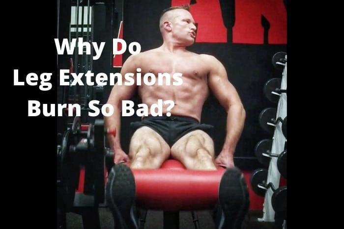 Why Do Leg Extensions Burn So Bad