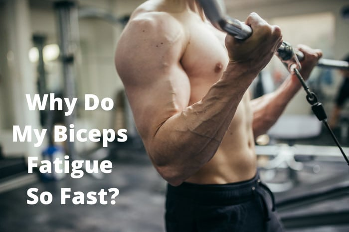 Why Do My Biceps Fatigue So Fast